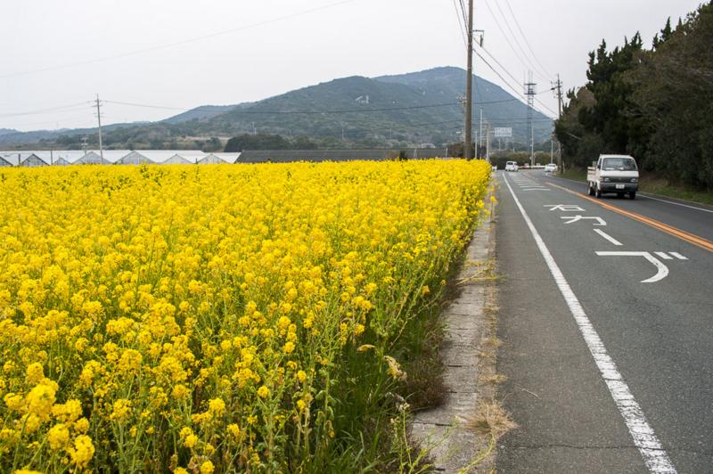 f:id:amano_shintaro:20170322220842j:plain