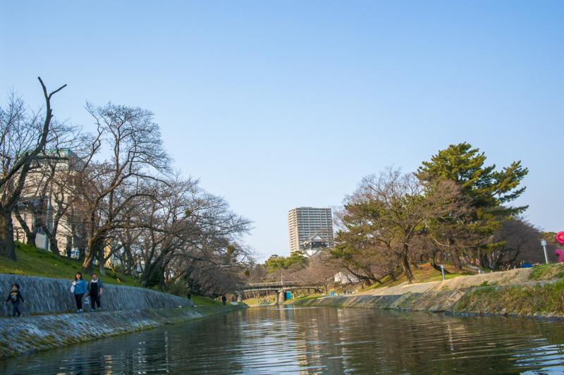 f:id:amano_shintaro:20170331175036j:plain