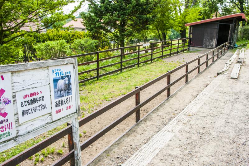 f:id:amano_shintaro:20170530210307j:plain