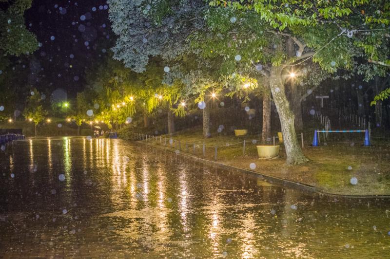 大雨のナイトZOOのんほいパーク