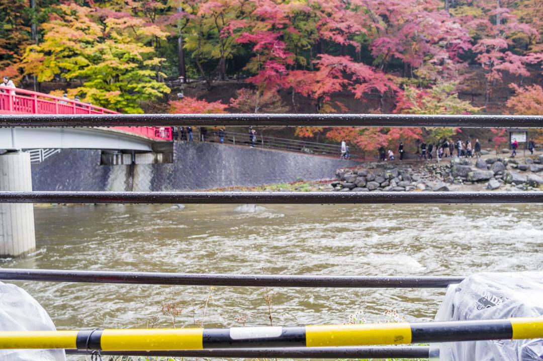 f:id:amano_shintaro:20171125203922j:plain