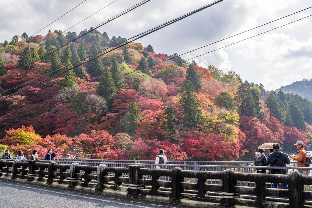 f:id:amano_shintaro:20171125204301j:plain