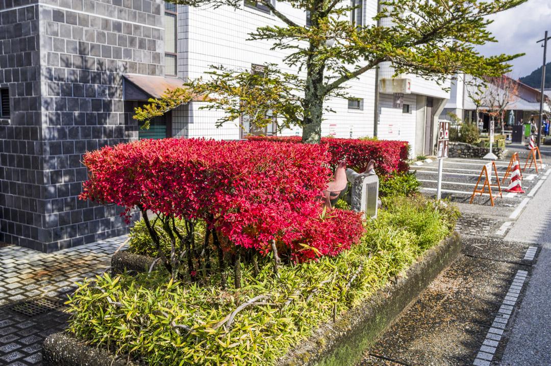 f:id:amano_shintaro:20171125204320j:plain