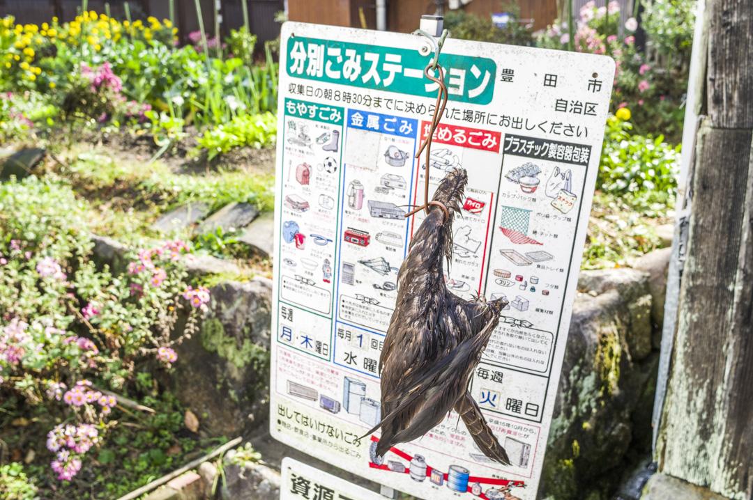 f:id:amano_shintaro:20171125204327j:plain