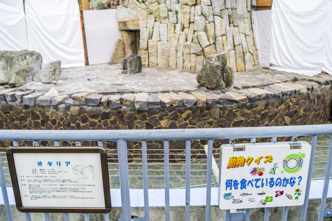 江戸川区自然動物園のオタリアは工事中