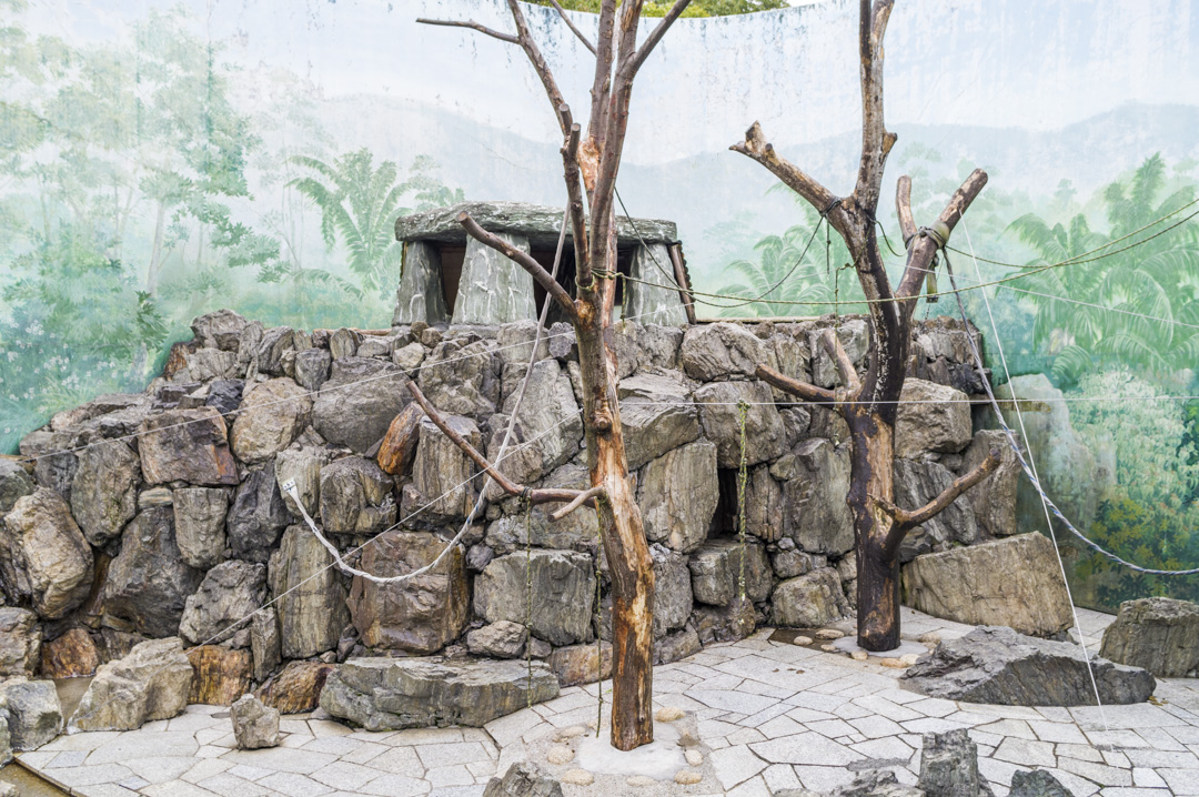 江戸川区自然動物園サル山閉鎖