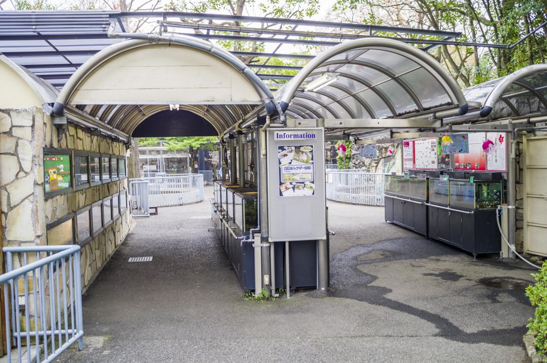 江戸川区自然動物園の異世界トンネル