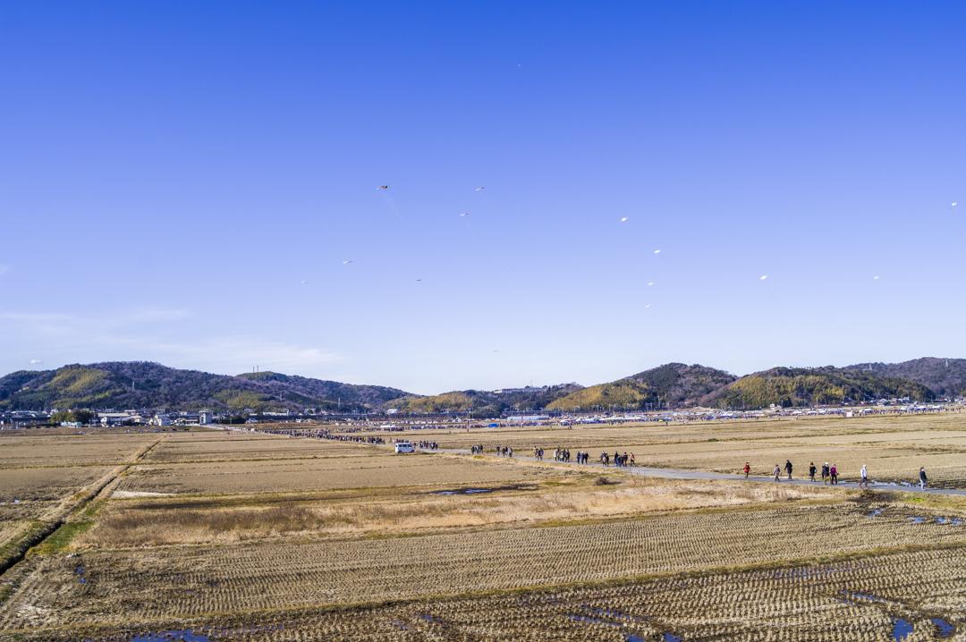 f:id:amano_shintaro:20180131135853j:plain