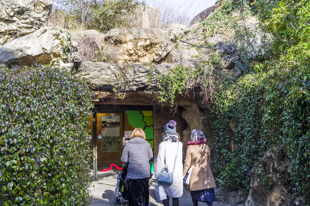 天王寺動物園の爬虫類館の洞窟
