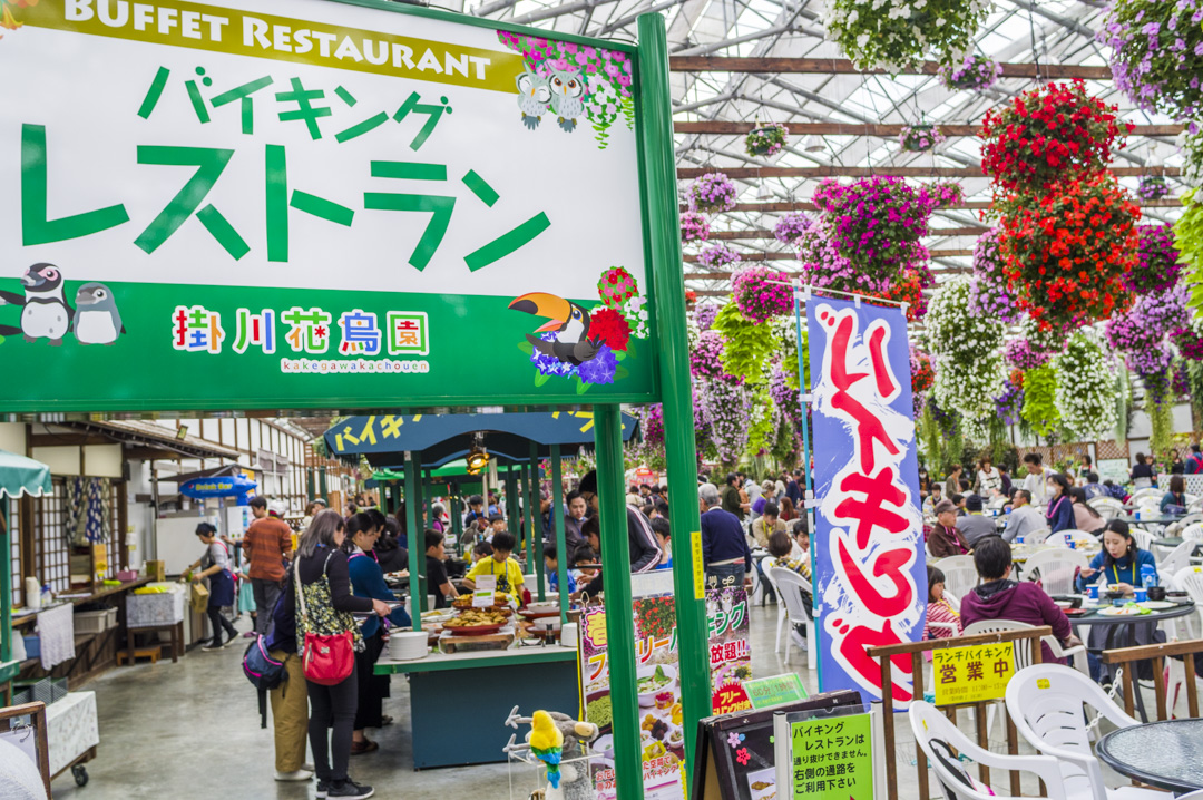 掛川花鳥園のバイキングレストラン