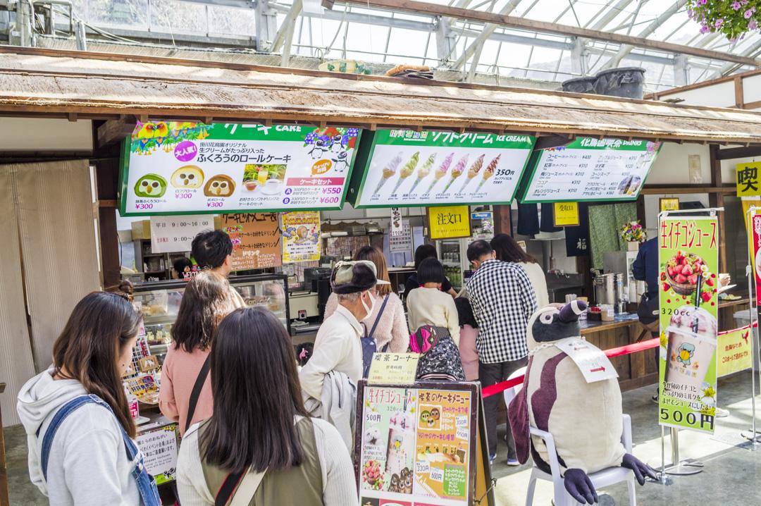 掛川花鳥園の軽食ふくろうのロールケーキ