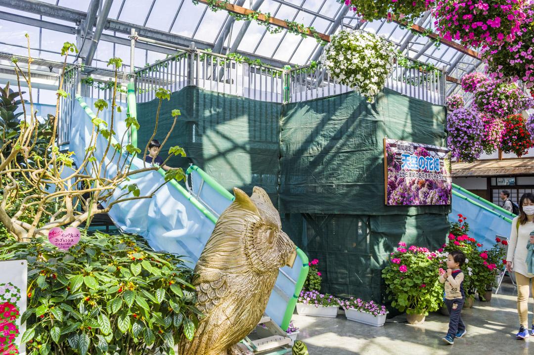 掛川花鳥園の展望台