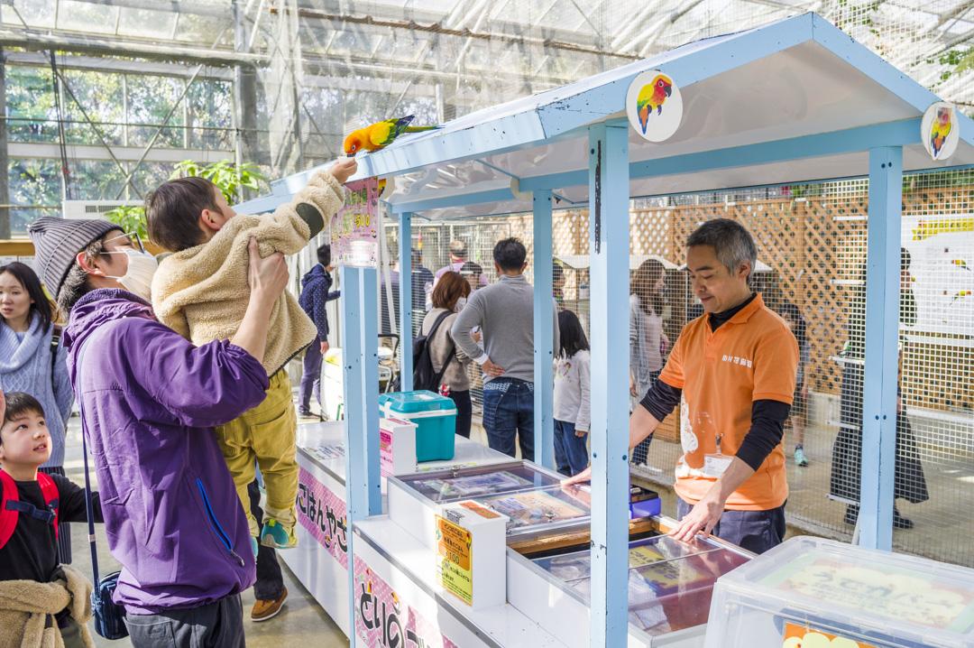 掛川花鳥園の鳥が賢い