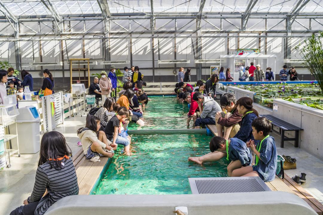 掛川花鳥園のドクターフィッシュ体験