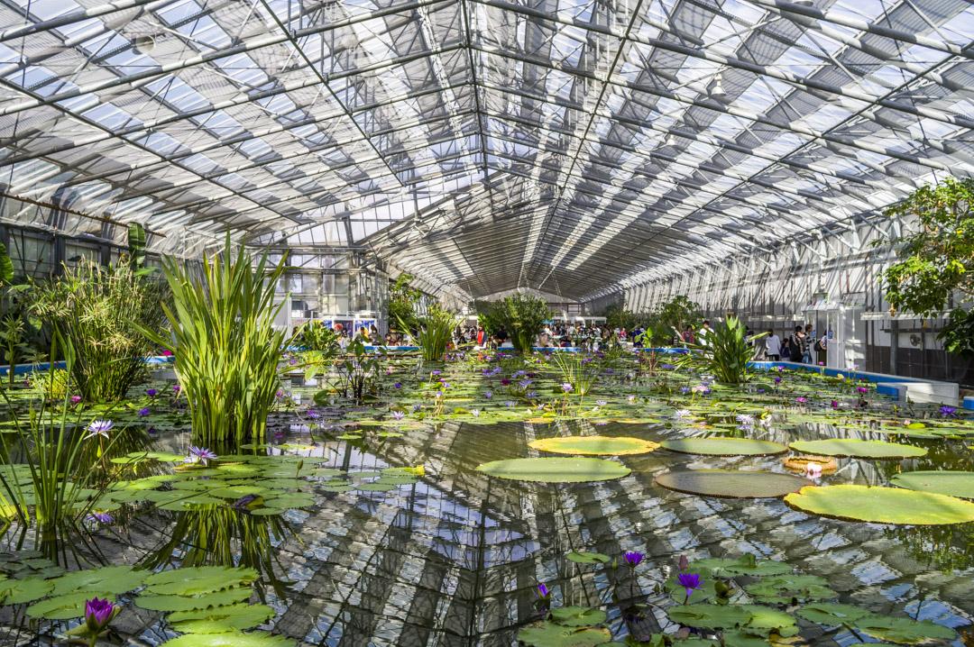 掛川花鳥園のドーム