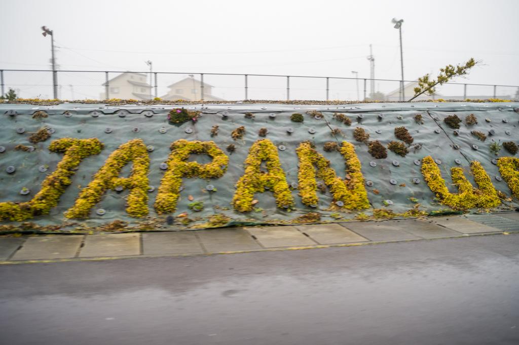 富士山静岡空港のウェルカムボード的花壇