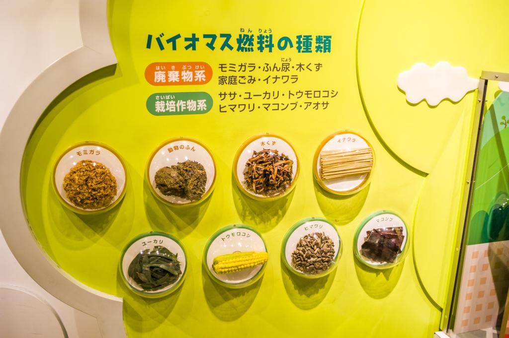浜岡原子力館 新エネルギーホール バイオマス燃料
