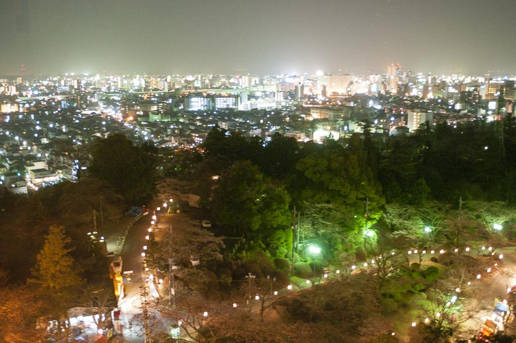 八幡山公園宇都宮タワーからの夜景イルミネーション