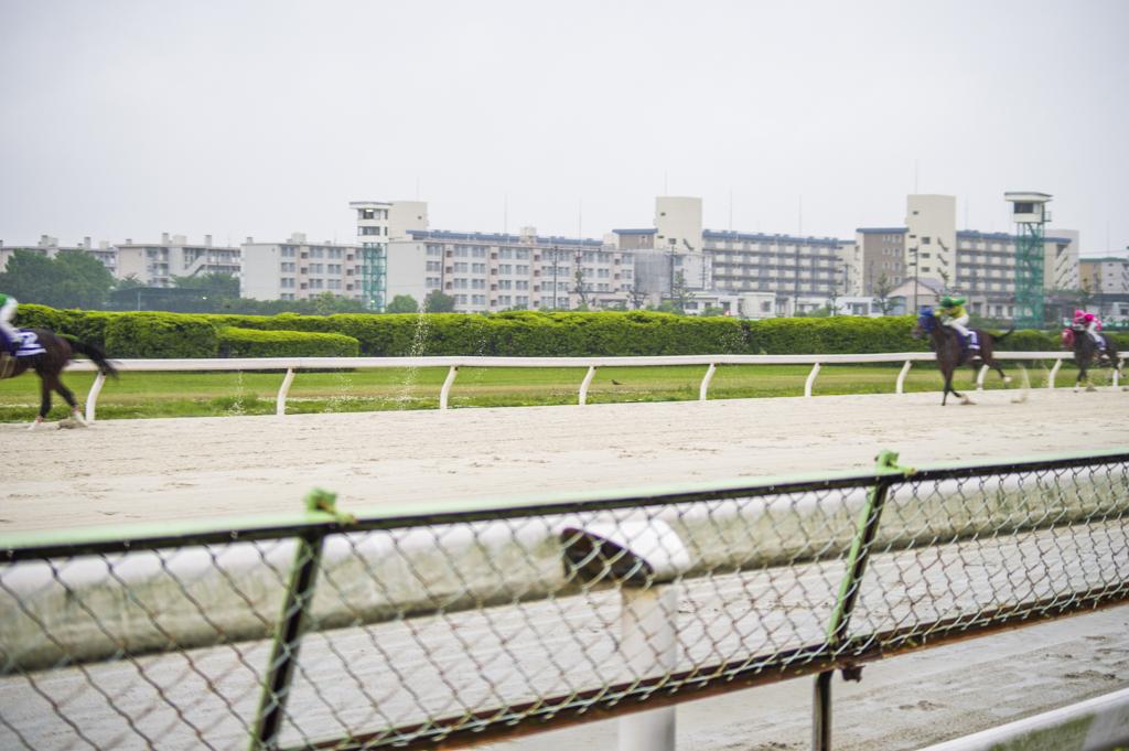 7馬身差の圧勝劇のサムライドライブ