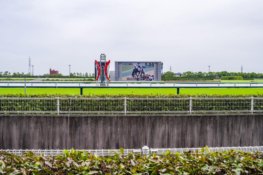 2018年のダービーは中京競馬場の最前線で観戦