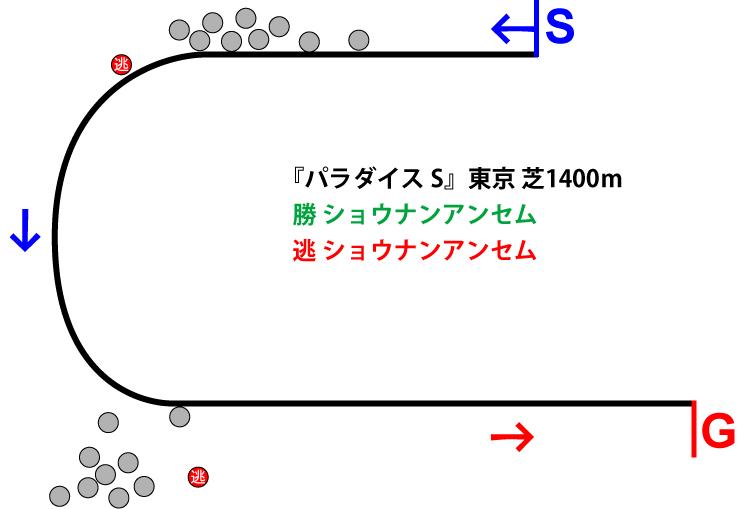 パラダイスステークス2018年レース展開位置取り図