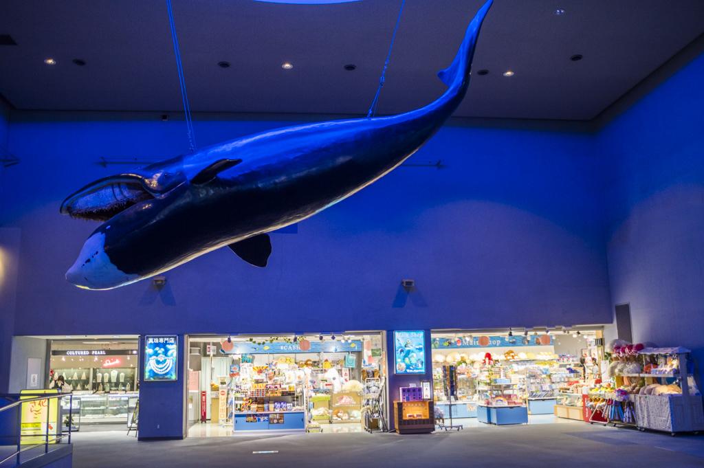 鳥羽水族館のエントランスのクジラ