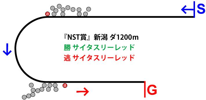 NST賞2018年のレース展開位置取り図