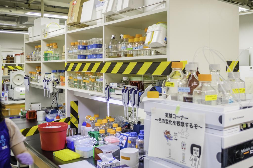 分子科学研究所一般公開2018の実験室公開