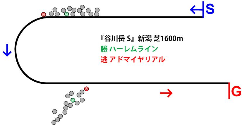 谷川岳ステークス2019年のレース展開位置取り図