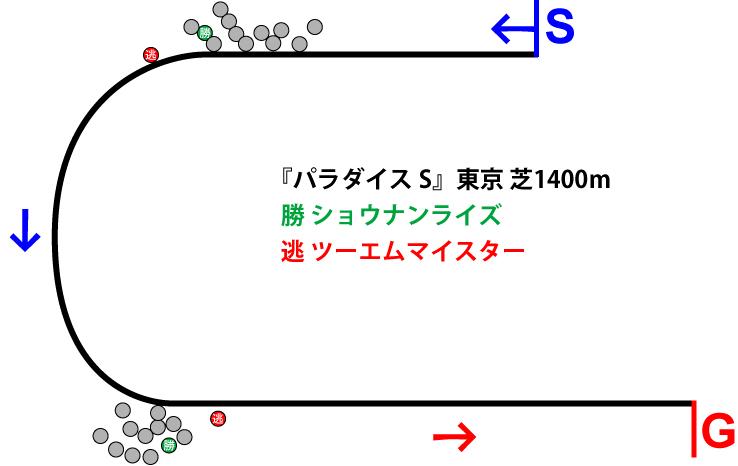 パラダイスステークス2019年のレース展開位置取り図