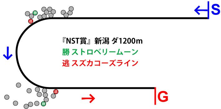 NST賞2019年のレース展開位置取り図