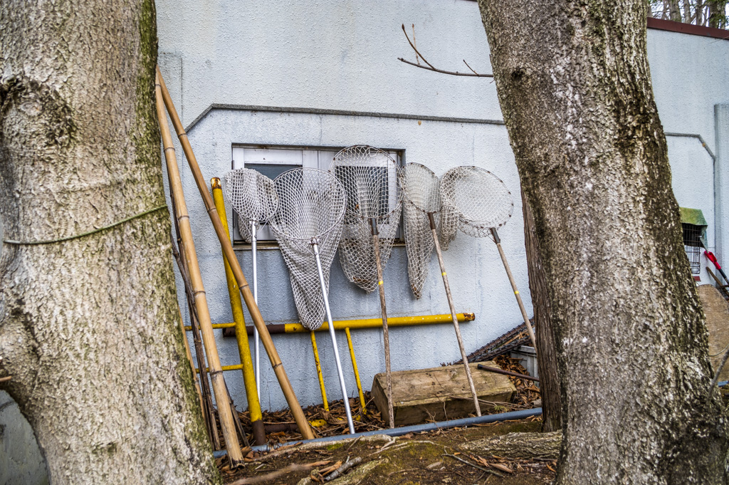 大きい虫取り網のようなものが5つ壁に立てかけられている