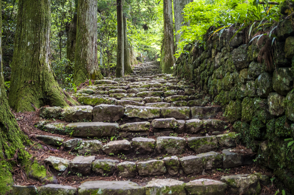 鳳来寺山の石段