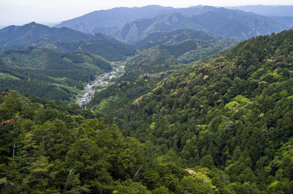 五郎塚からの眺め