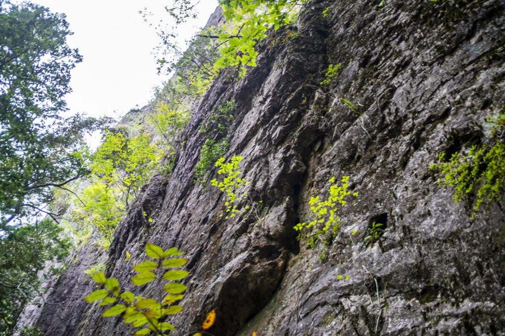 鳳来寺山鏡岩下