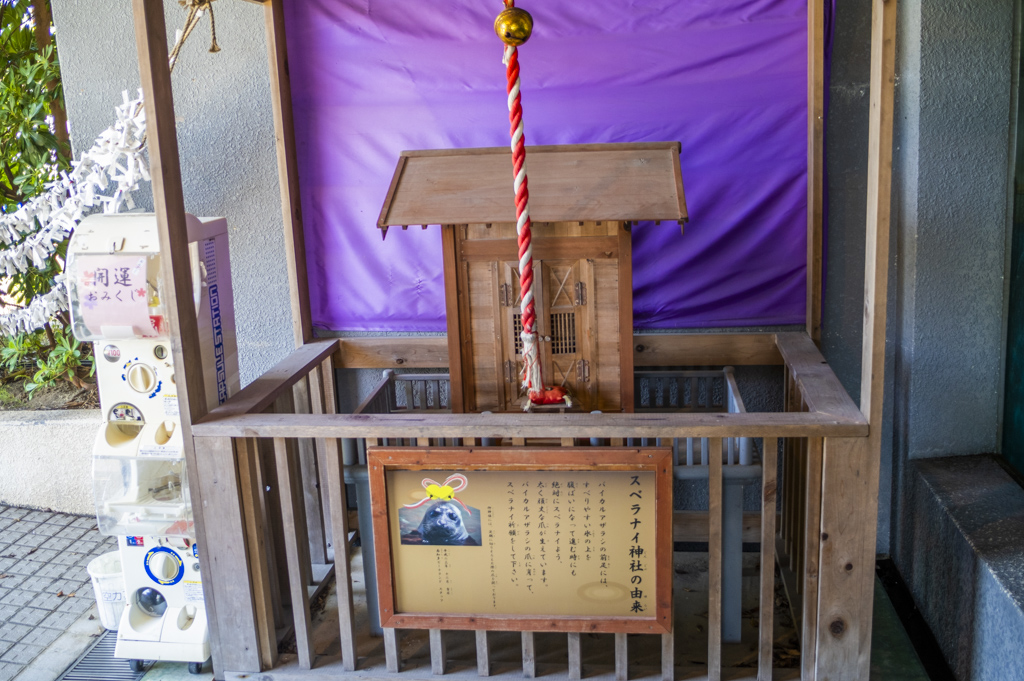 スベラナイ神社のお賽銭箱