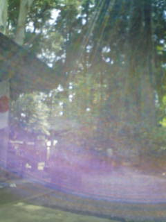 f:id:amanokotone:20110515102843j:image:left