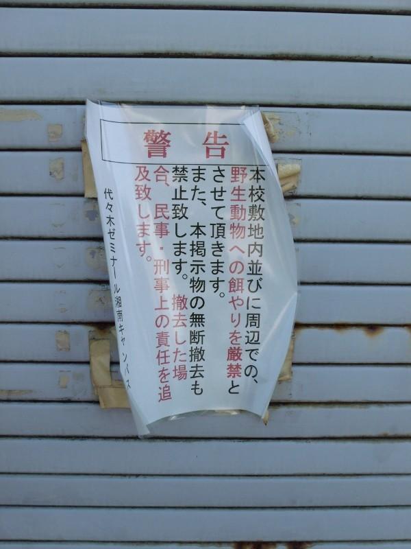 代々木ゼミナール湘南キャンパス張り紙(大船)