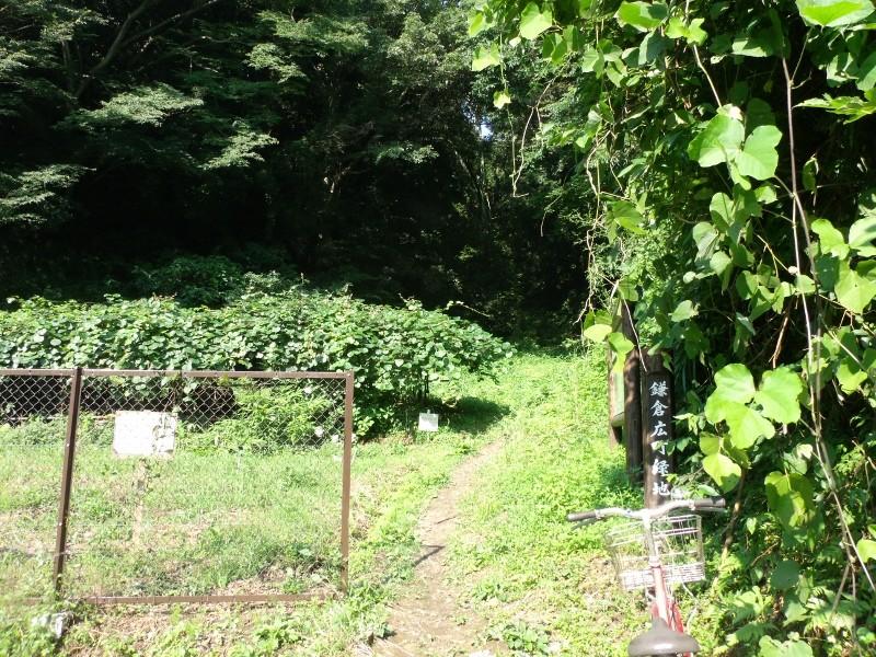 鎌倉広町緑地(室ヶ谷入口)