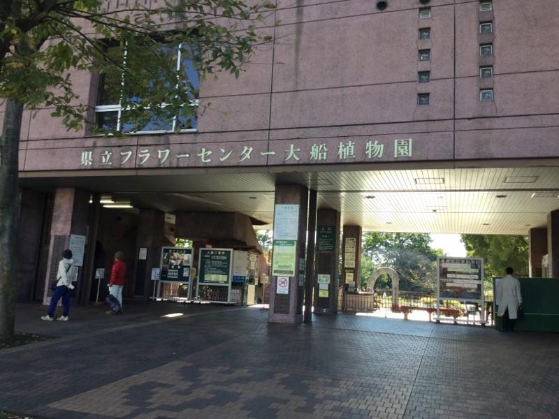 f:id:amanomurakumo:20151128011014j:image:h400