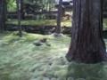 [風景] 苔寺