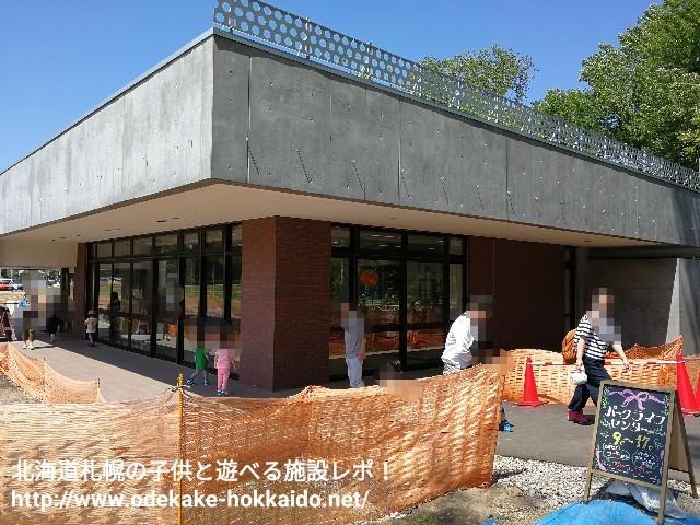 f:id:amazonkakaku:20170621182420j:image