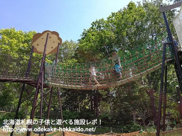 f:id:amazonkakaku:20170621204733j:image