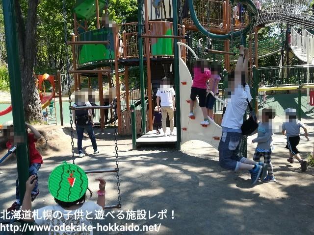 f:id:amazonkakaku:20170621205008j:image