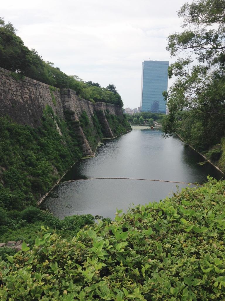 f:id:amazukusi:20160712181049j:plain