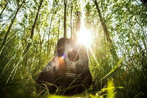ギターに木が使われる理由とは