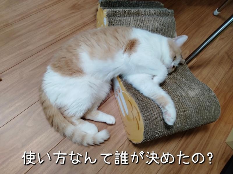 f:id:ameda-amanatsu:20210821082508p:plain