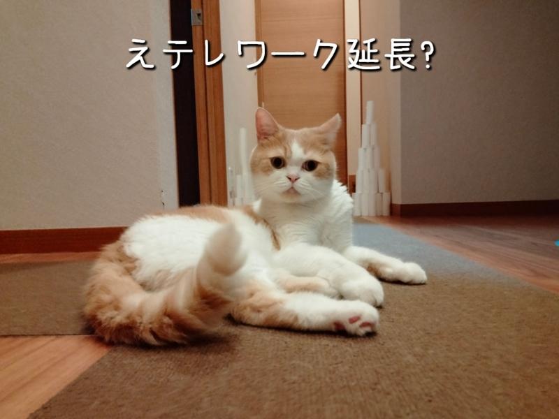 f:id:ameda-amanatsu:20210914084058p:plain