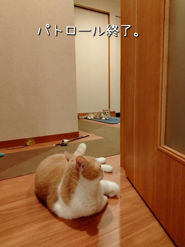 f:id:ameda-amanatsu:20210914085802p:plain
