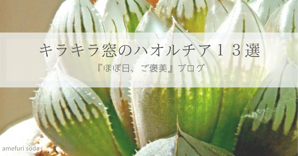 f:id:amefuri-soda:20210716162417p:plain